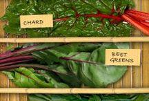 Vegetables 101