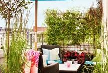 terasz / terrace