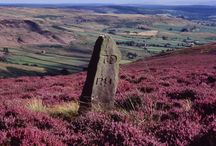 Yorkshire Moors, UK