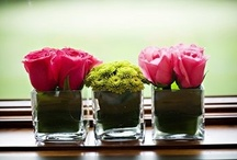 Green and pink decor