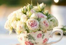 Rose roseti