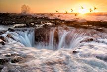 Washington / Oregon