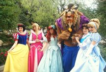 Disneyland The Dream