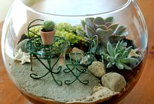 terrarium with furniture