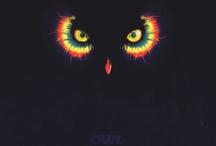 Owls / I love owls, period.  / by Tiffany Howard
