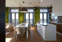 zelené stěny | green wall