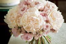 Flower arrangements / 癒されます♡