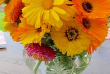 Flowers ~ can't live without them! <3