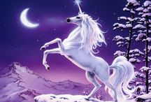 Unicornism / Introducing a new world religion: Unicornism. Love & admiration. Bow to the horse with the horn, biatches!
