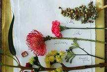 Dry Flowers | Ikebana