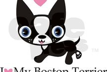 Love - Boston Terriers - Love / by Stacy