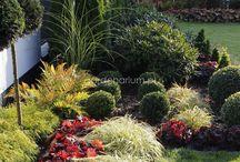 Gardenarium.pl