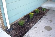 Catch Basins / Catch Basins and draintile can be effectively used to eliminate the ugly gutters and safely move water away from the house. The tile can move the water as far away from the foundation as needed.