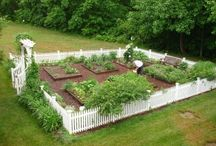 Trädgårdsland