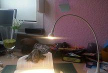 Folding Workstations / Alle meine Plätze, an denen ich meine gefalteten Bücher mache.