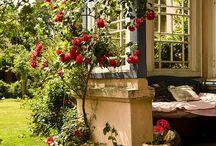 Garden rooms and porches / by Amanda Box