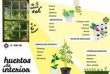 horta na casa