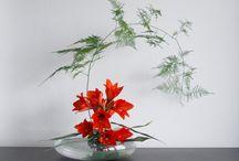 Ikebana / art of fleur