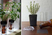 Bio, Eco, Enviorenment Friendly  / Nature