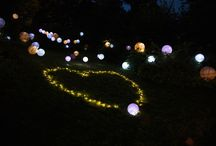 Tangled Themed Marriage Proposal