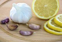 W zgodzie z ziołami / Informacje o ziołach, ich przeznaczeniu, stosowaniu