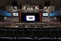 The Vine Showroom