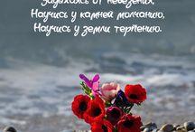 цитаты. ❤
