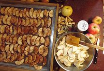 Dehydrator Recipes / All about dehydrating food for use later