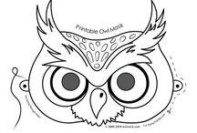 owl ideas