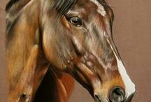 Pferde zeichnen