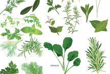 herbal flower design