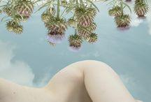 Storie di Porno Agricolo / Porno Agricolo a cura di T-Squirt Eroticism Km 0 - Sustainable Sexuality - Pornography Ogm Free