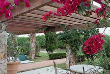 jardin casa