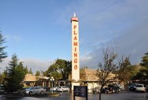 I Love The Flamingo Hotel / Recreation in Santa Rosa California