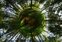 Onderzoek lens-based panorama