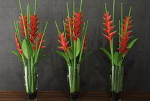 decoracao com flor planta
