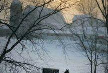 Plain Folk - Amish & Mennonite