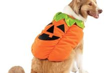 dog costumes / by best of BKLYN