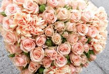 Valentine's Collection / Sample bouquets to celebrate Valentine's Day. Romantic arrangements made with original pastel shades of our roses.
