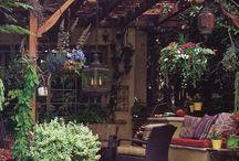 Backyard/front yard ideas  / by Angela Zapata