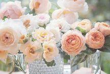 Dekoration Blumen & Co.
