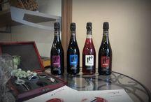 Lambrusco / Le nostre bottiglie, tradizione e innovazione tecnologica si fondono per creare un gusto unico e inconfondibile!