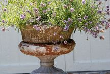 Garden Urns & Plinth Ideas