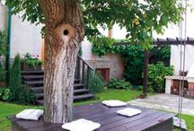 sezení kolem stromu