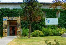 Museo Internazionale Delle Ceramiche in Faenza, Italy