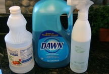 DIY Cleaner's  Etc. / by Barbara Skeen