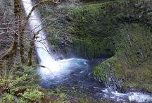 Oregon Hikes