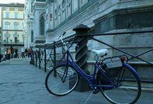 Tuscany Cycle Chianti Bike Tours / Chianti,Bike Tours,Fun,Italy,beautiful Tuscany