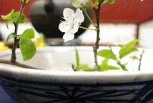 L'artisanat autour du thé / Théière, tasse, soucoupe mais aussi chasen, chawan, gong fu cha, plateau à thé ... L'univers autour du thé est riche et magnifique !