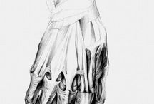Anatomy / drawing, human